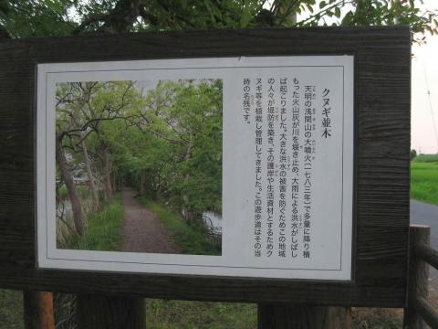 kazo_ukiya201407_6