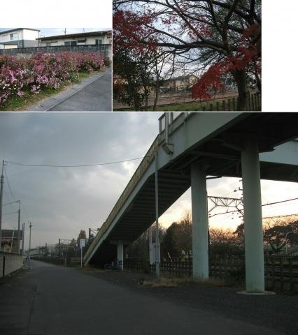 nskizm_irumi201512_1