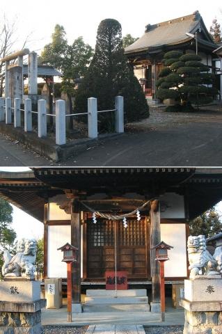 oura_kzj-shinmeigu201501_1