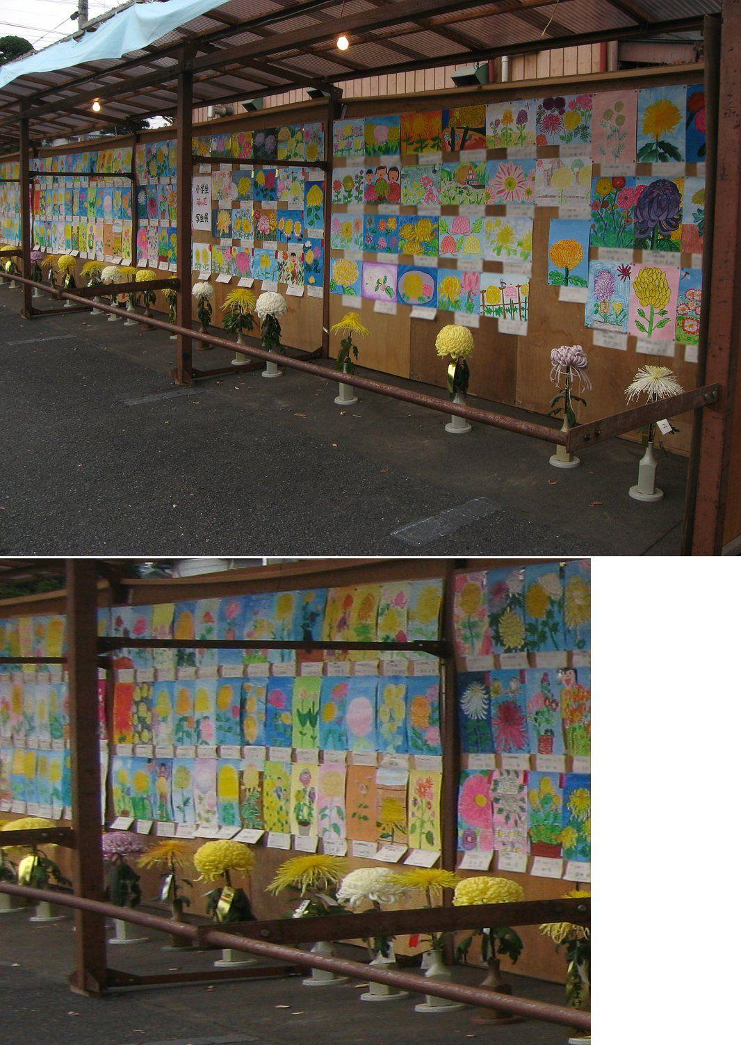 sano-yakutoke201511_15.jpg