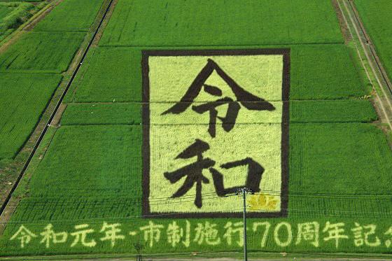 12-560-0D3A0420-1.jpg
