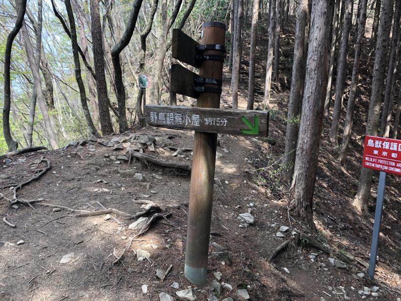 三頭山周遊コース157