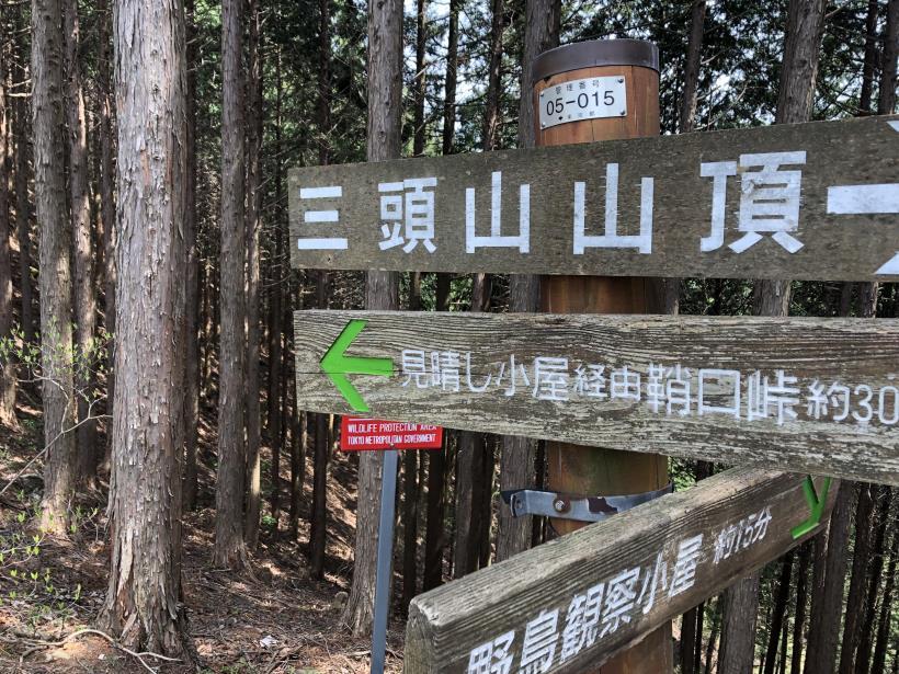 三頭山周遊コース158