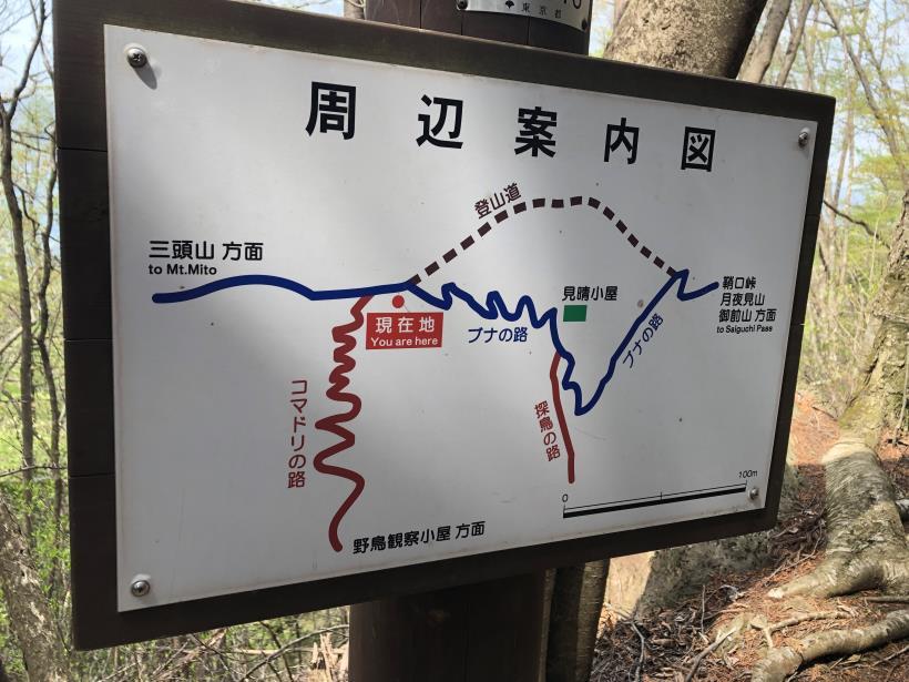 三頭山周遊コース159