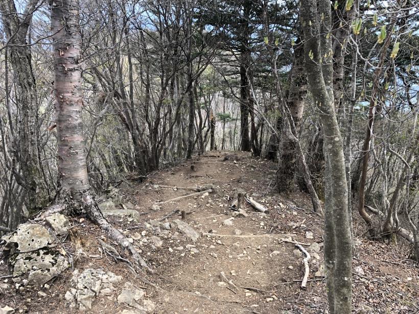 三頭山周遊コース142