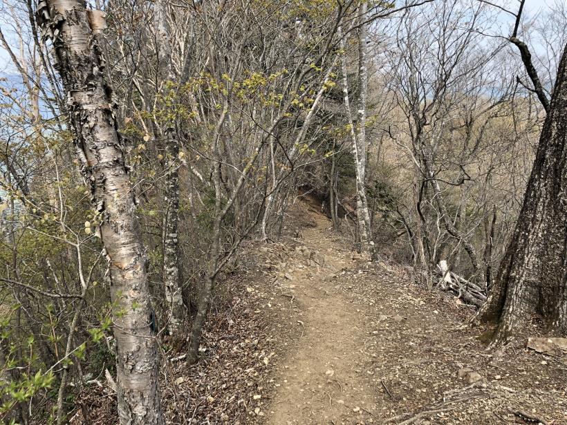 三頭山周遊コース146