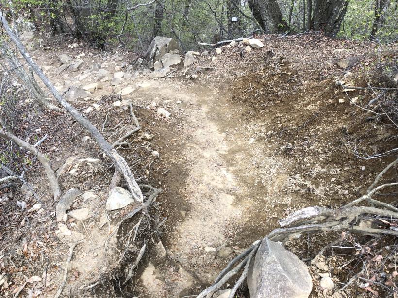 三頭山周遊コース150