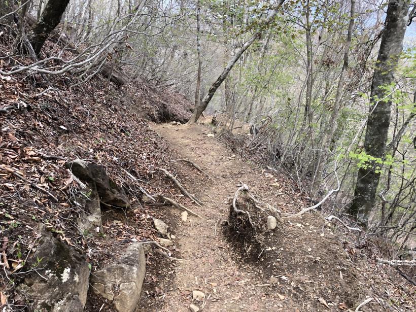 三頭山周遊コース152
