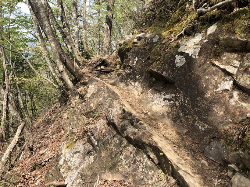 三頭山周遊コース162