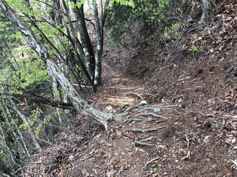 三頭山周遊コース163