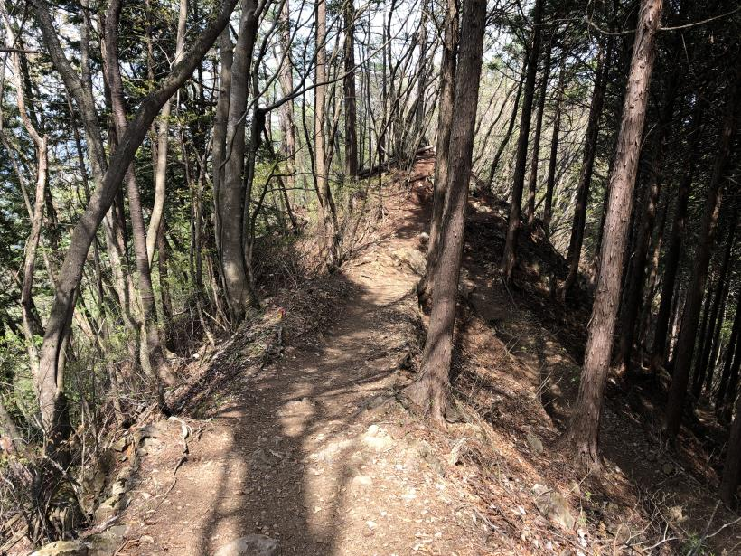 三頭山周遊コース165