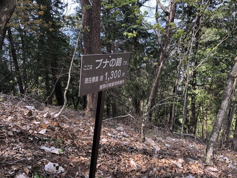 三頭山周遊コース172