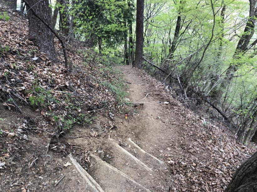 三頭山周遊コース175