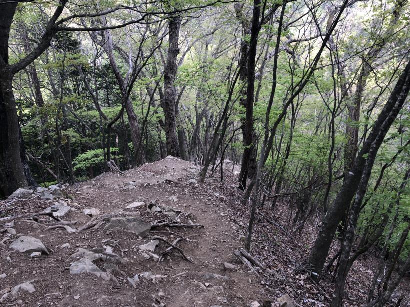 三頭山周遊コース176