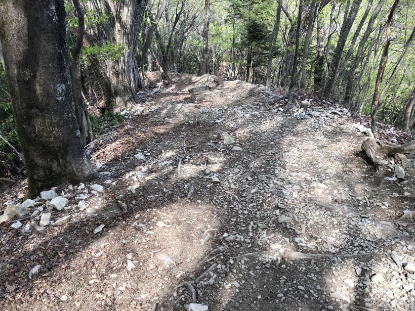 三頭山周遊コース178