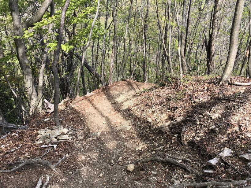 三頭山周遊コース180