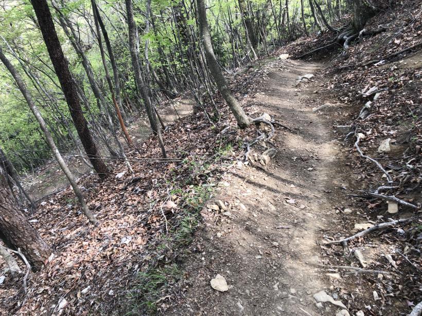 三頭山周遊コース181