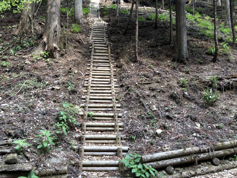 三頭山周遊コース191