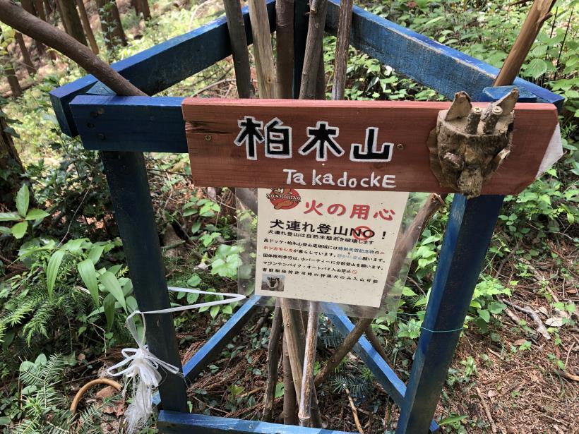 柏木山の作業道09