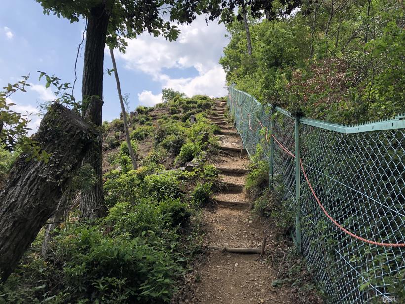 柏木山の作業道14