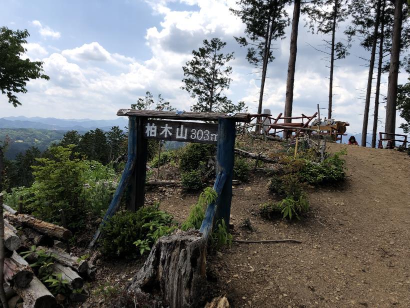 柏木山の作業道15
