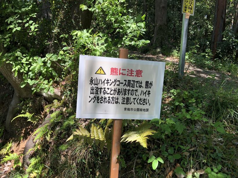 青梅の森03