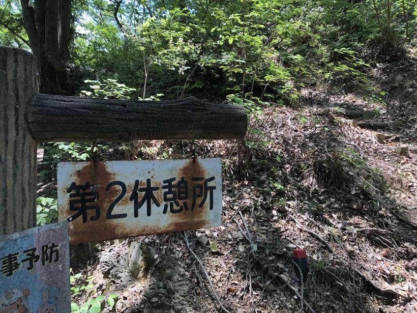 青梅の森06