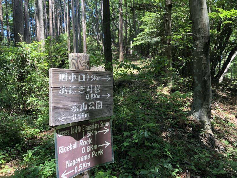 青梅の森28