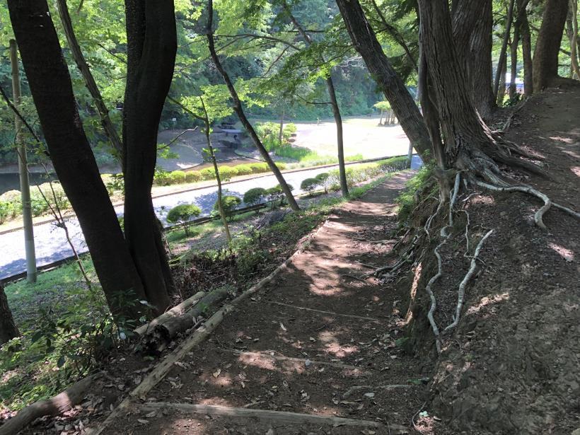 青梅の森122