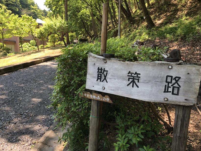 青梅の森123