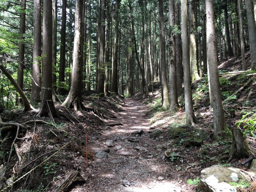 武甲山31