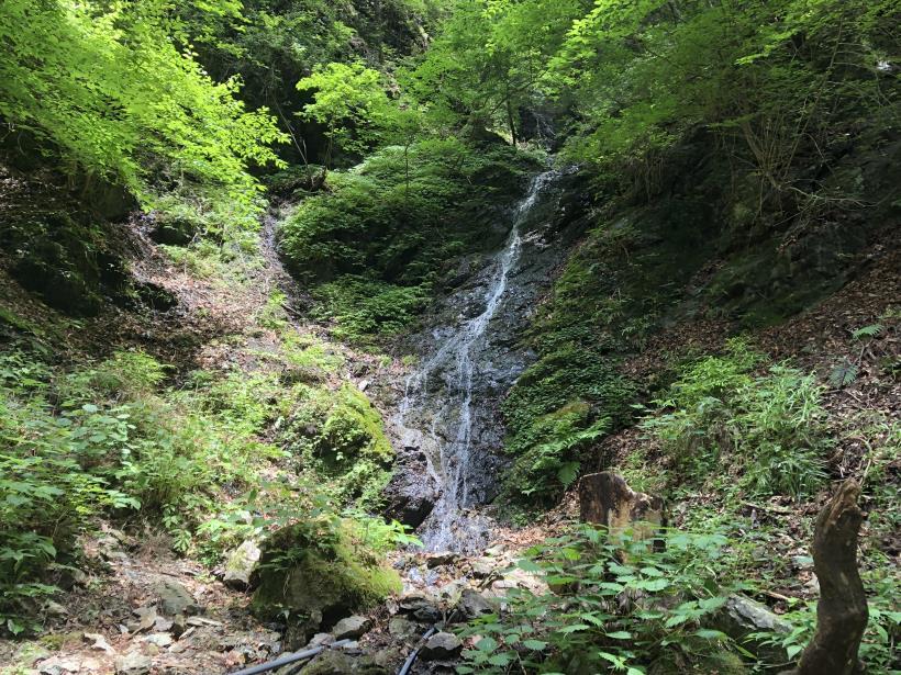 武甲山56