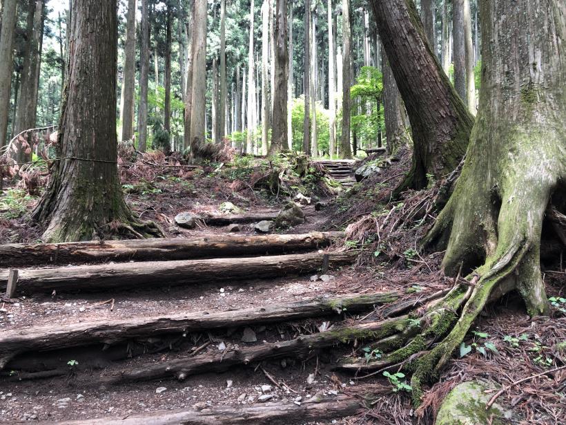 武甲山67
