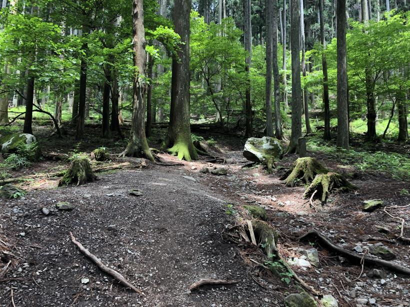 武甲山68