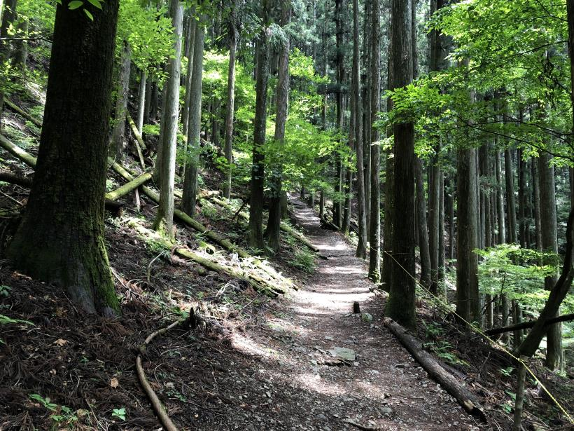 武甲山75