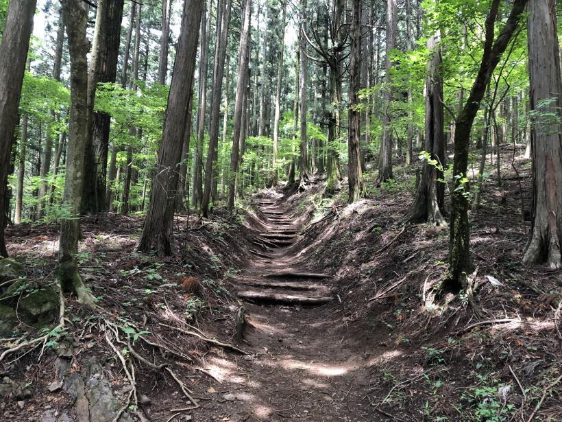 武甲山78