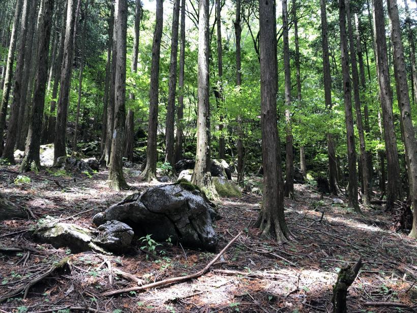 武甲山96