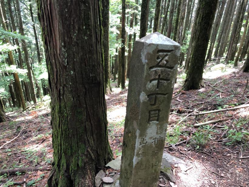 武甲山110
