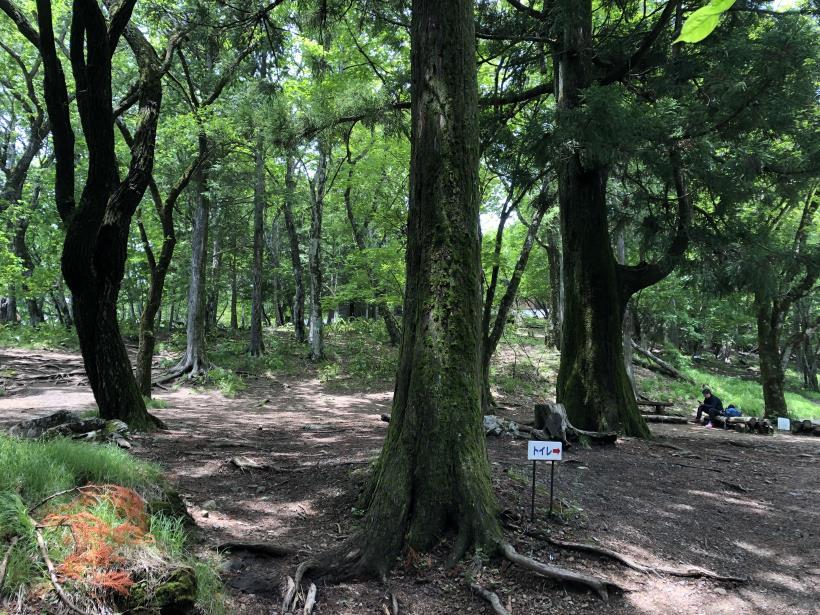 武甲山114