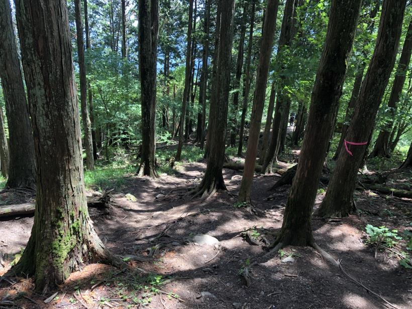 武甲山140