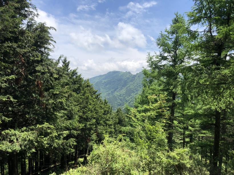 武甲山144