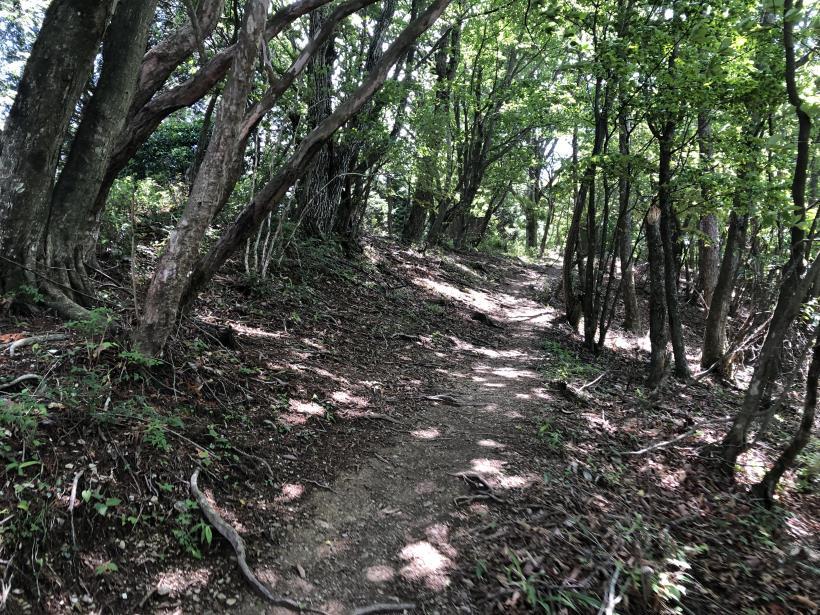 武甲山154