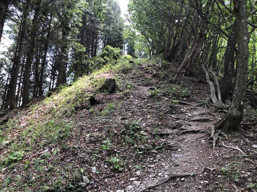 武甲山157
