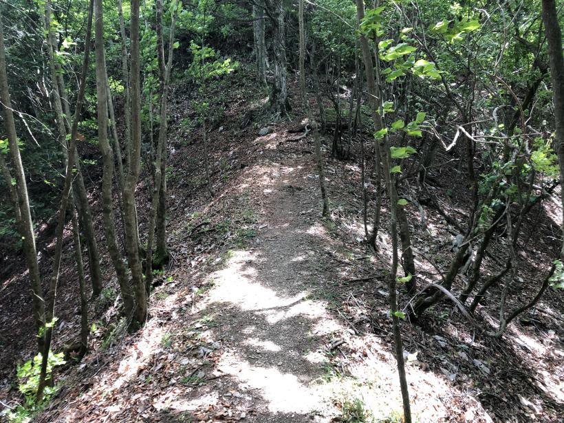 武甲山159