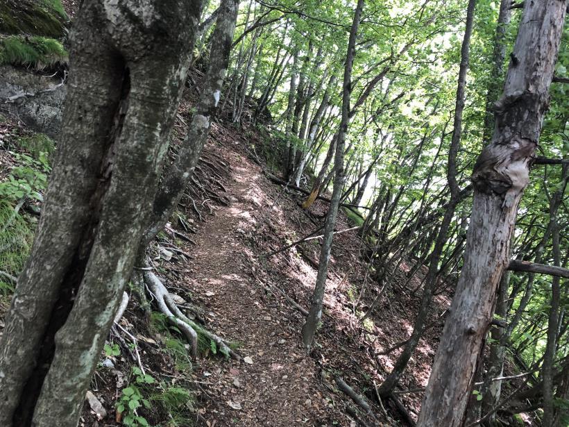 武甲山161