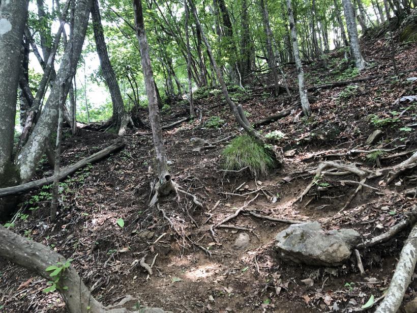 武甲山162