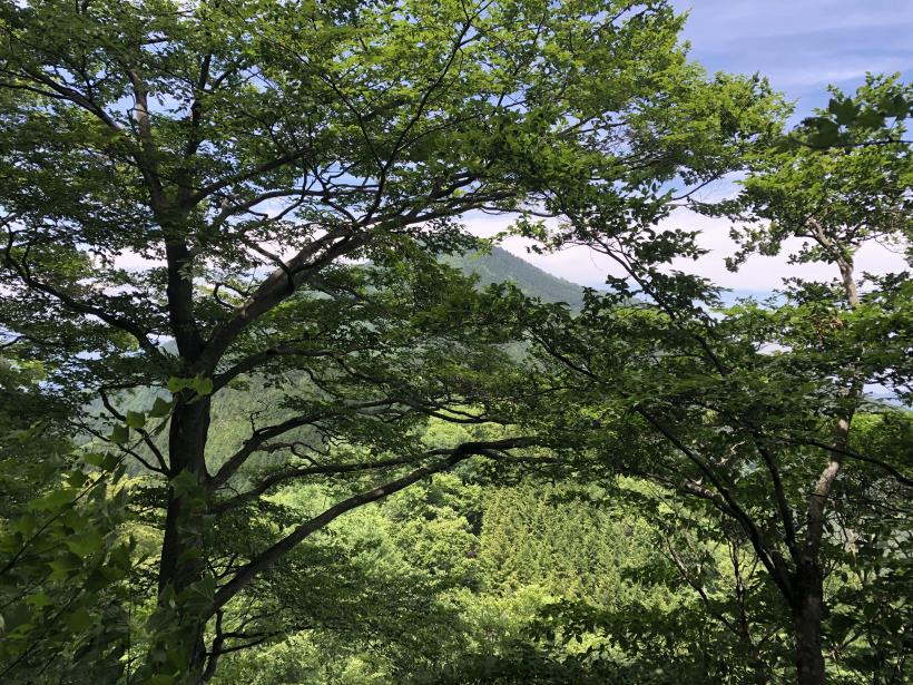 武甲山165
