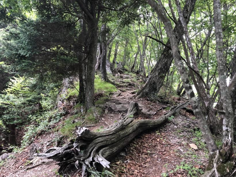 武甲山172