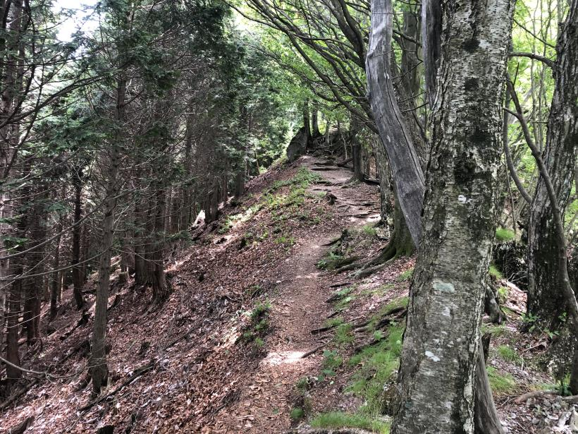 武甲山173