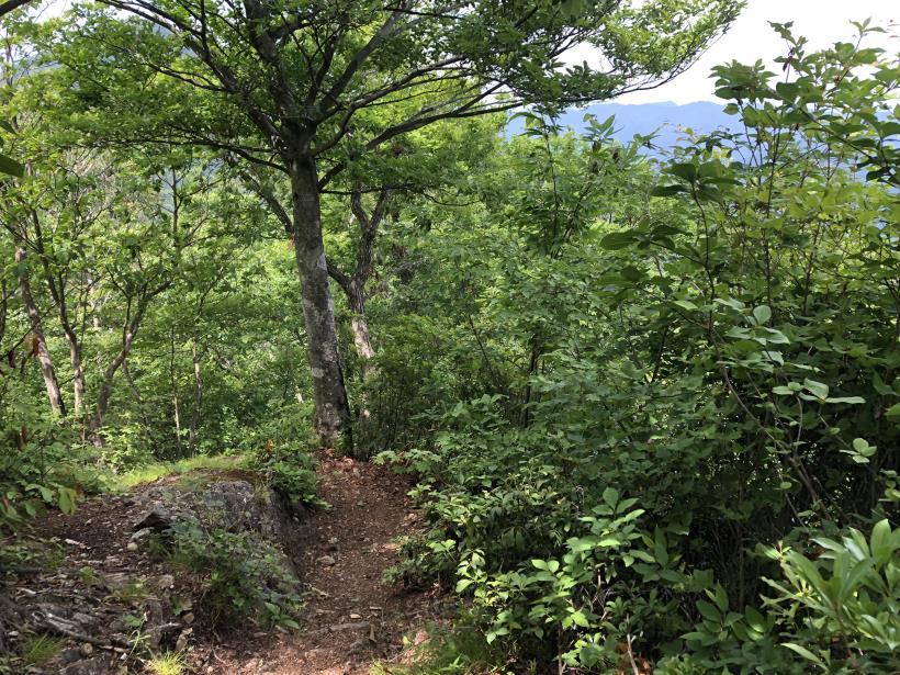 武甲山182